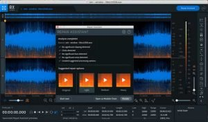 Izotope RX Elements interface